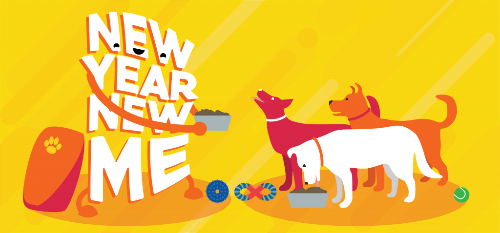 New Year's resolution idea: donate to charity